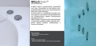 Wellis Dublo Hydro™ 180x130 cm hidromasszázs kád  WK00005-2